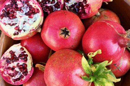 fall fruit pomegranate